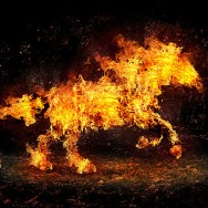 083-photomanipulations-fire